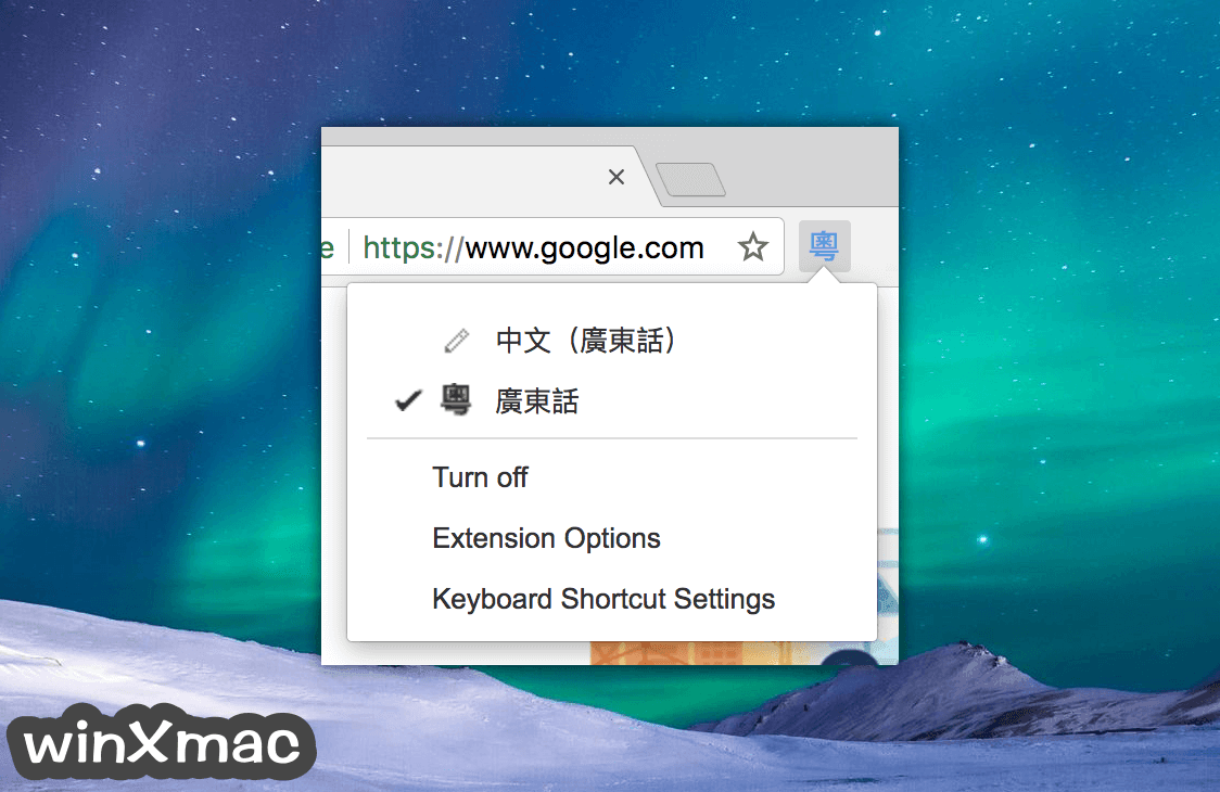 Google Input Tools for Mac Screenshot 1