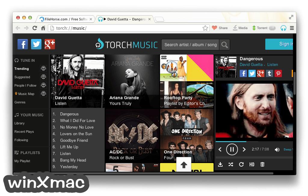 Torch Browser for Mac Screenshot 4