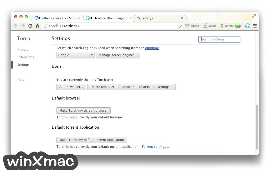 Torch Browser for Mac Screenshot 5