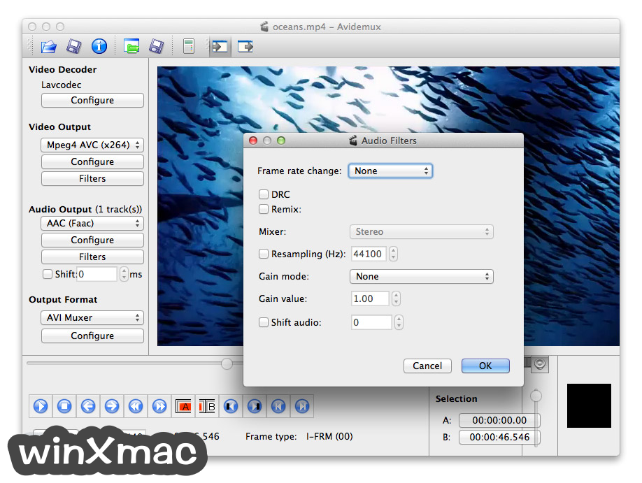 Avidemux for Mac Screenshot 4