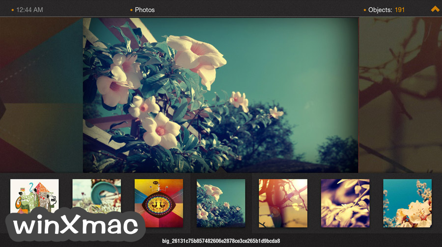 Plex Home Theater for Mac (64-bit) Screenshot 5