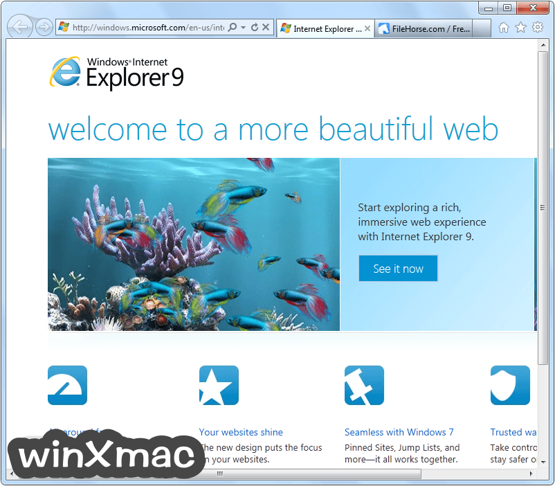Internet Explorer (Windows7) Screenshot 1