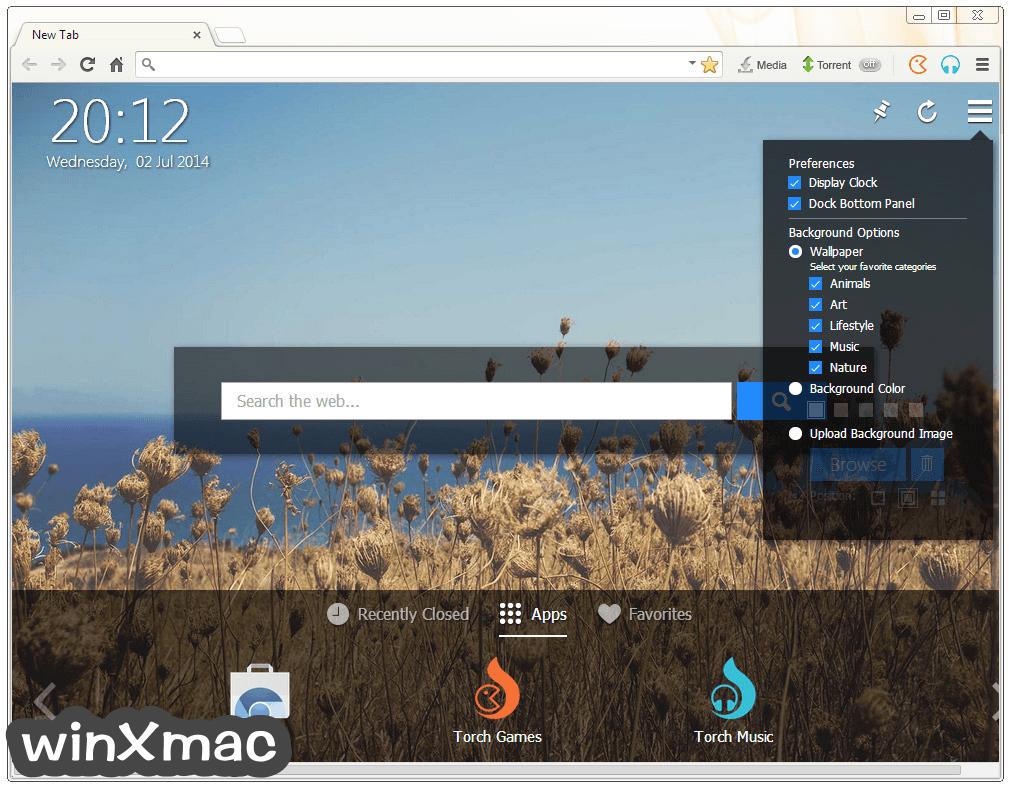 Torch Browser Screenshot 2