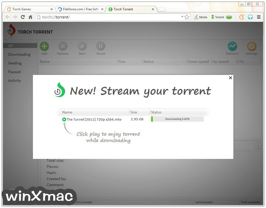 Torch Browser Screenshot 3