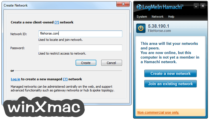 LogMeIn Hamachi Screenshot 5