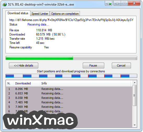 Internet Download Manager Screenshot 3