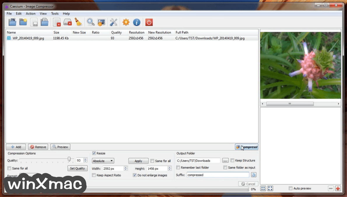 Caesium Image Compressor Screenshot 1