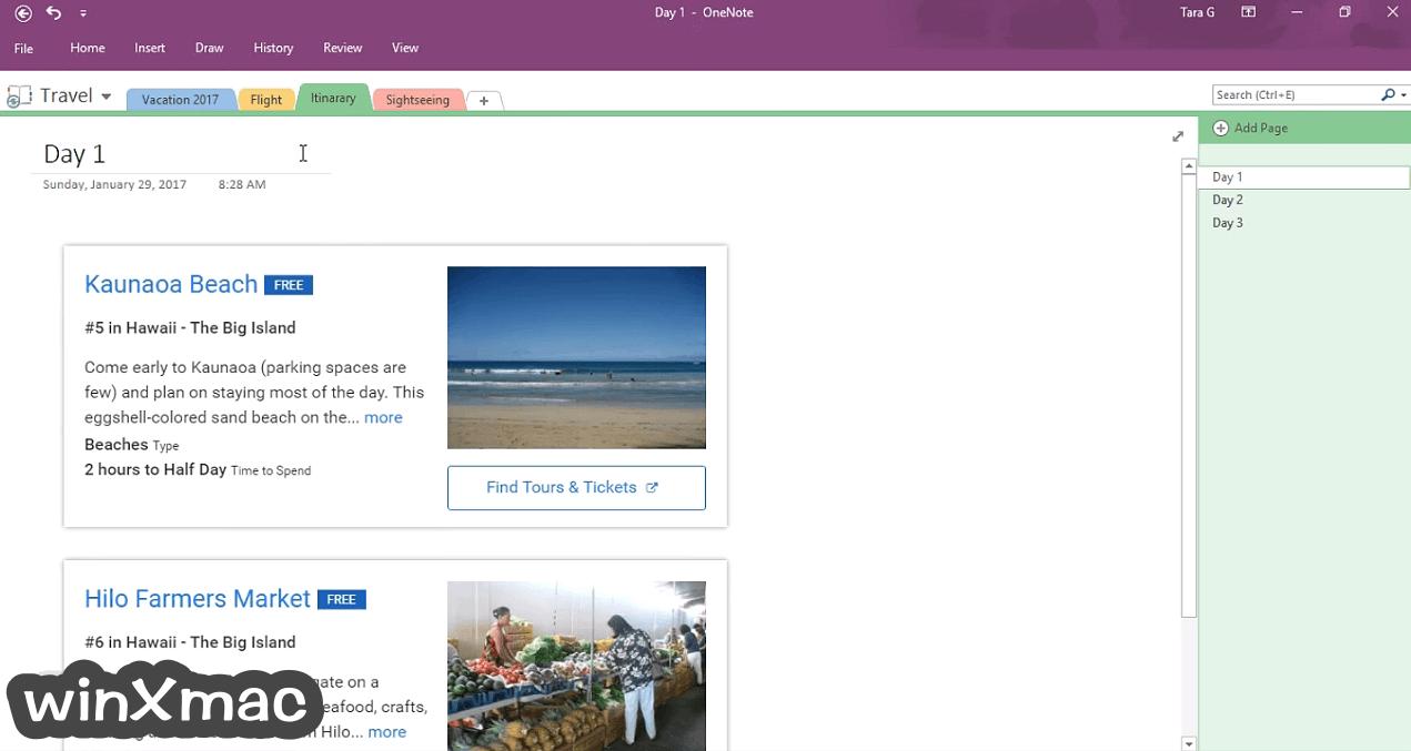 Microsoft OneNote (32-bit) Screenshot 5