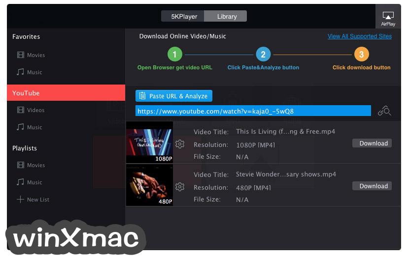 5KPlayer Screenshot 3