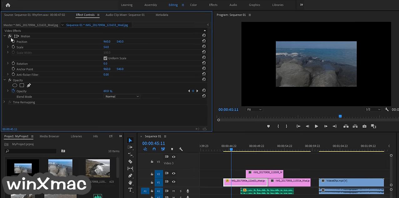 Adobe Premiere Pro Screenshot 4